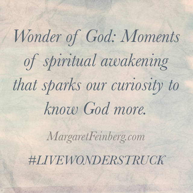 Are you Spiritually Asleep? (Plus What in the World is Wonderstruck Wednesday?)