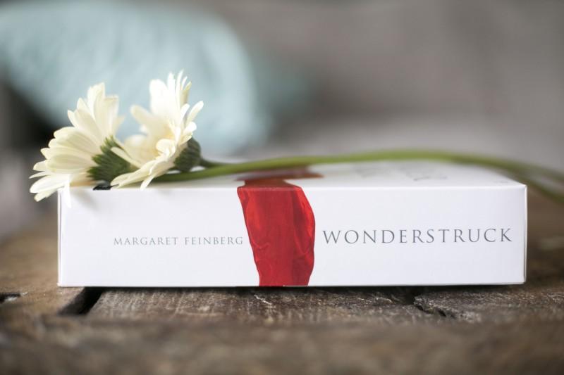 Wonderstruck DVD Bible STudy